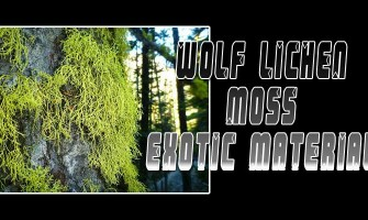 Wolf Lichen Exotic Material